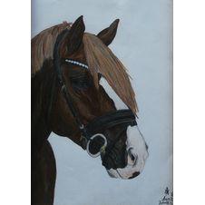 Koń w ogłowiu, Alicja Botorek, 30 x 20 cm, nr kat. 31-14-2-2019-poz.2