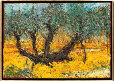 Ratajczyk Grzegorz Drzewo oliwne w ogrodzie Getsemani, 2016